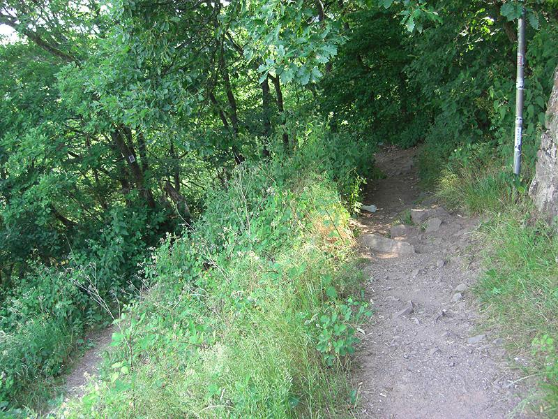 Ein Wanderweg führt hinab ans Saarufer.