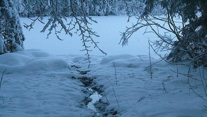 Frillensee_Winter