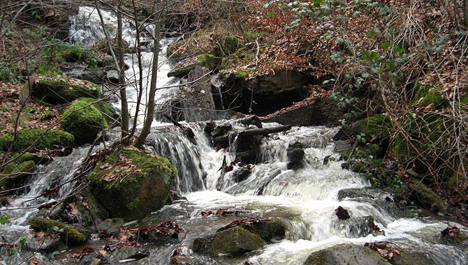 Heslacher-Wasserfälle_Nesenbach
