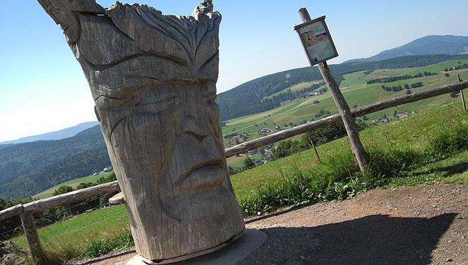Schauinsland_Baum
