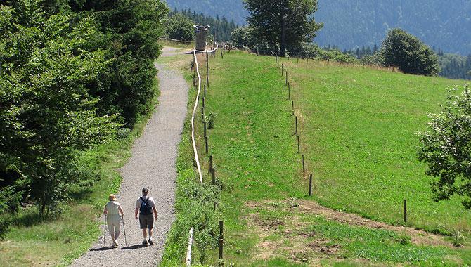 Schauinsland_Wandern