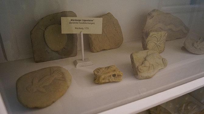 Bamberger-Naturkundemuseum_Fossilfälschungen