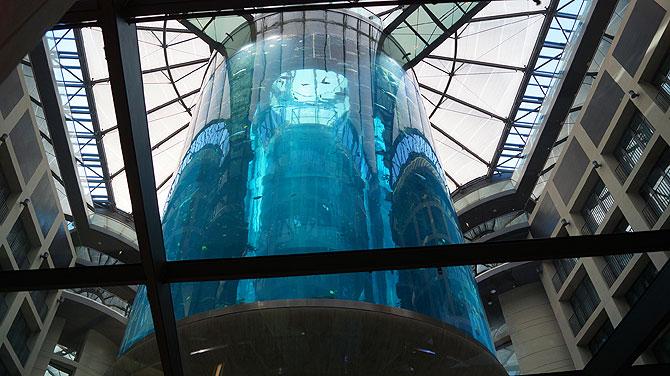 Sea-Life-Berlin_Aquadom