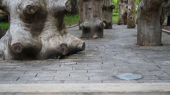 Adventure-Minigolf-Enzklösterle-Zauberwald