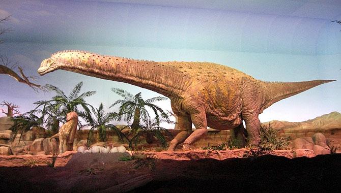 Gondwana-Dinoshow