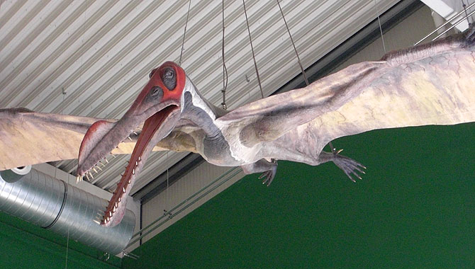 Gondwana-Flugsaurier