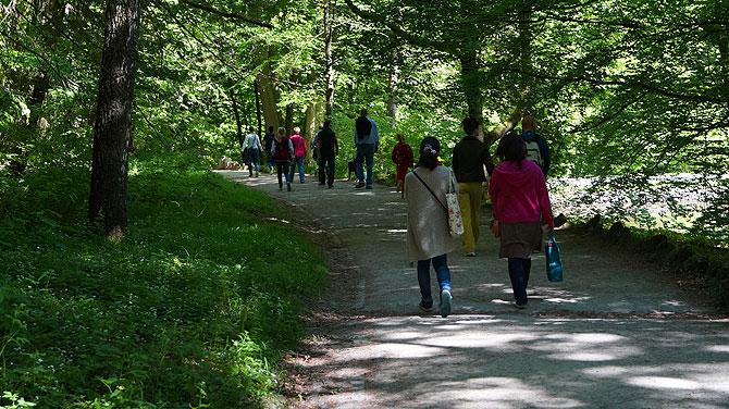 Wasserspiele-im-Bergpark-Kassel_Schlosspark