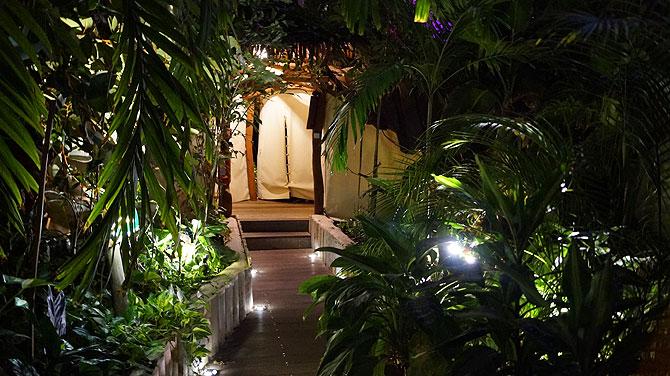 Tropical-Islands-Zelt