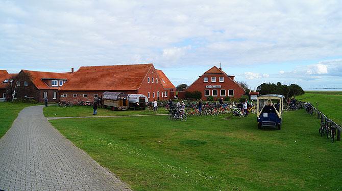 Langeoog-Meierei