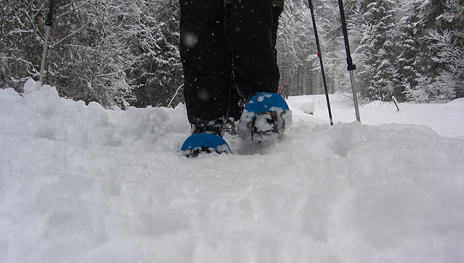 Schneeschuhwandern-im-Schwarzwald-Froschperspektive