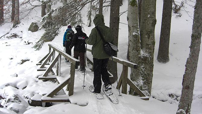 Schneeschuhwandern-im-Schwarzwald-Idylle