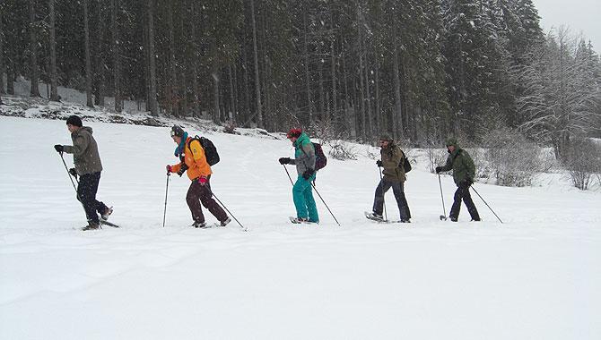 Schneeschuhwandern-im-Schwarzwald-Karawane