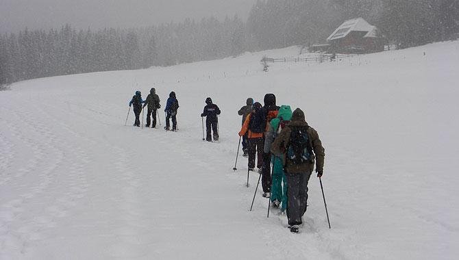 Schneeschuhwandern-im-Schwarzwald-Landschaft