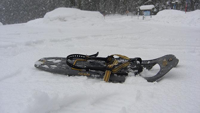 Schneeschuhwandern-im-Schwarzwald-Schneeschuhe