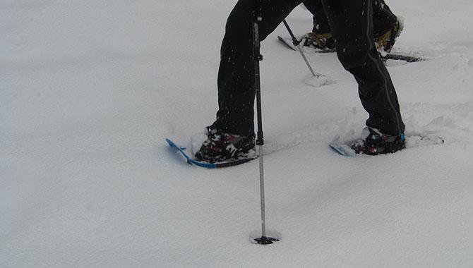 Schneeschuhwandern-im-Schwarzwald-Schneespur