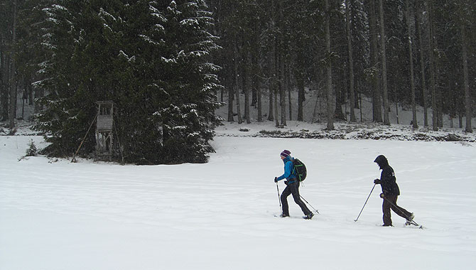 Schneeschuhwandern-im-Schwarzwald-Wanderführer