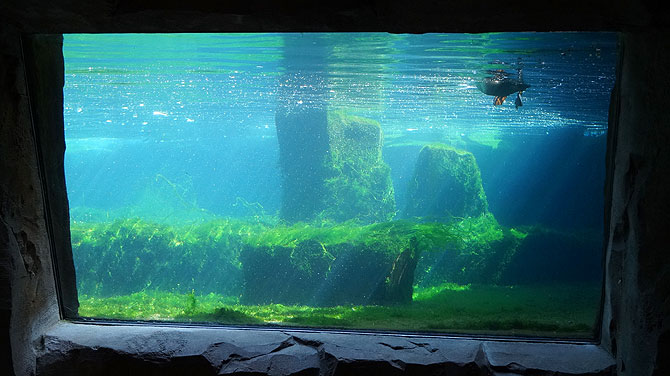 Zoo-am-Meer-Bremerhaven-Aquarium