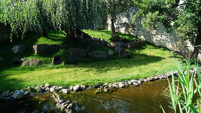 Zoo-am-Meer-Bremerhaven-Gehege