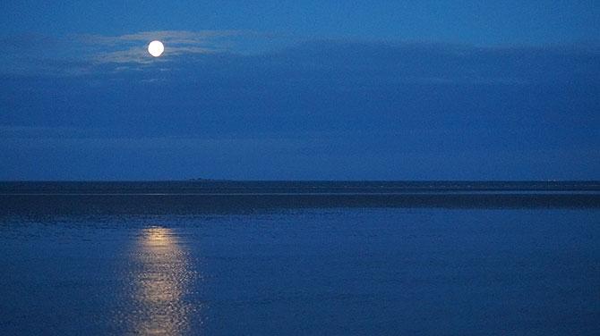 Mondaufgang spiegelt sich im Watt der Nordsee