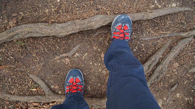 Knick, knack, die Ästen unter meinen Schuhen knacken.