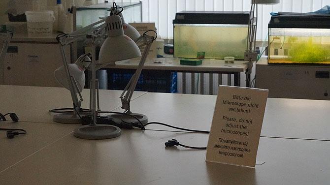 Bitte die Mikroskope nicht verstellen!