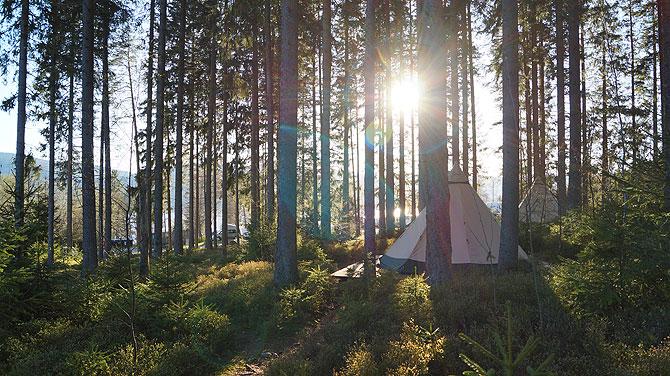 Sonnenstrahlen im Raff Taff Schwarzwald Camp