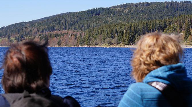 Die Kulisse entlag des Sees ist geprägt von viel Wald.