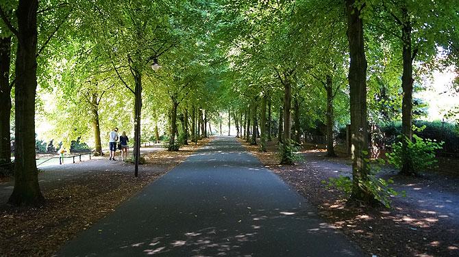 Die Promenade ist ein Fahrradring rund um die Münster Innenstadt.