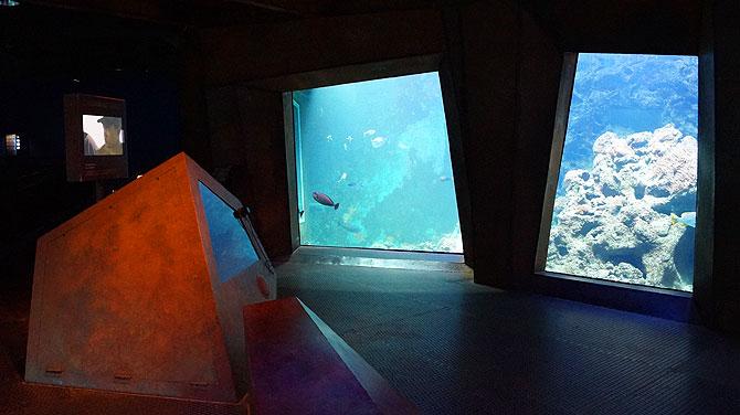 In der Themenwelt Aquarium siehst Du...Aquarien.