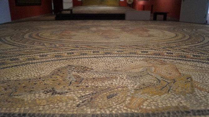 Polydus-Mosaik