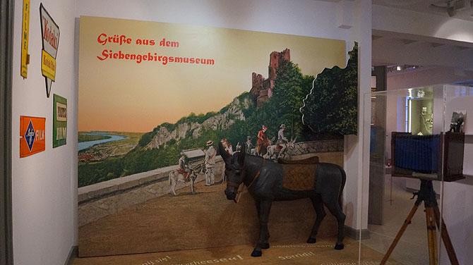 Fotowand mit Esel