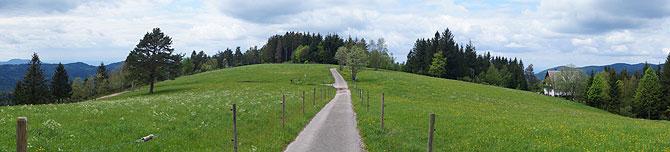 Panorama des Genießerpfad Karlsruher Grat