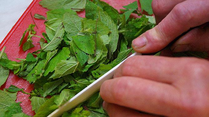 Kräuter werden fein säuberlich geschnitten.