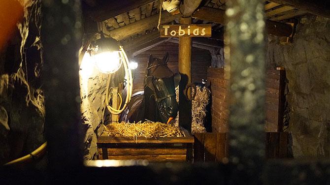 Grubenpferd Tobias