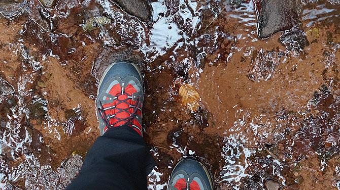Winterwanderung durchs Monbachtal mit Wasser