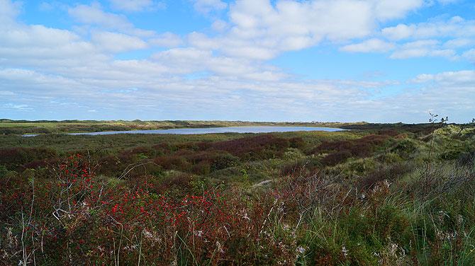 Der Hammersee ist der größte Nordseeinsel-See überhaupt