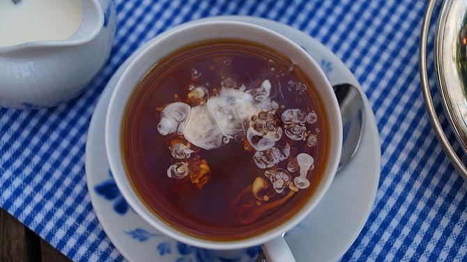 Wulkje in ostfriesischem Tee