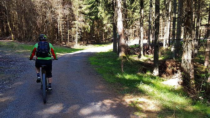 Beim Mountainbiken in der Vulkaneifel geht es über Stock und Stein