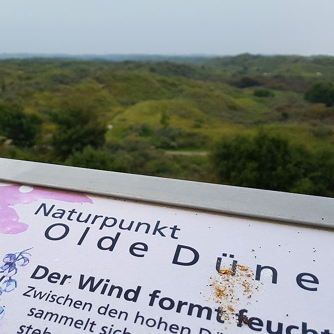 Naturpunkt Olde Düne