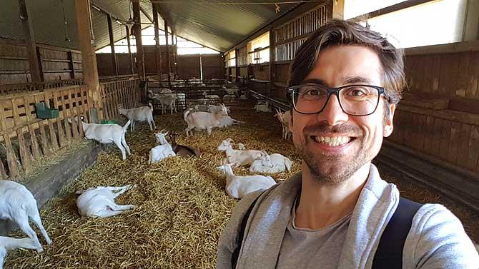 Ich im Stall der Ziegenkäserei Vulkaneifel