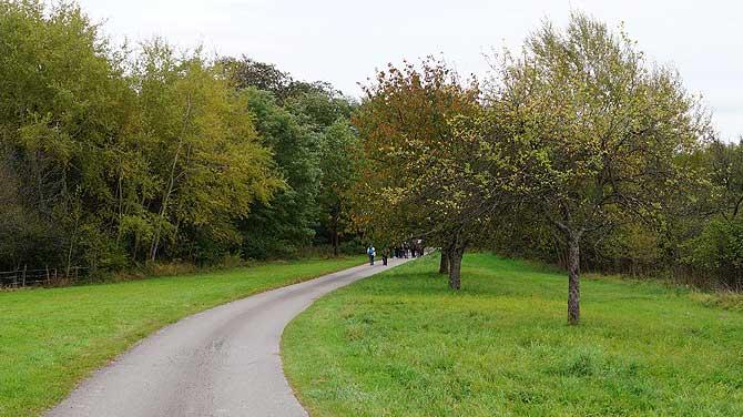 Streuobstwiesen im Bliesgau