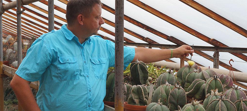 Bei Ulrich Haage in Erfurt geht es stachelig mit Kaktus zu