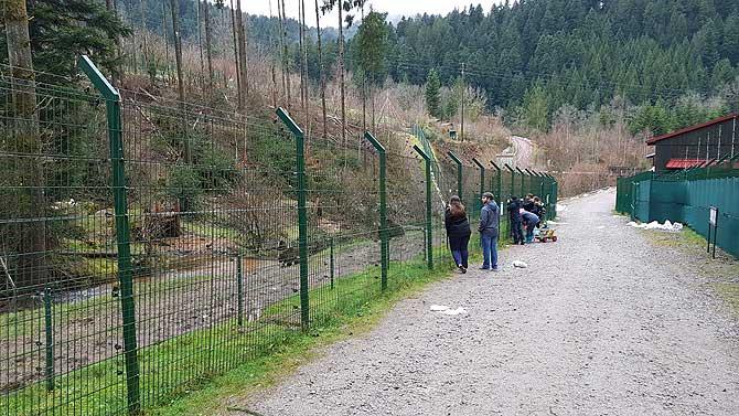 Zaun für Bär und Besucher