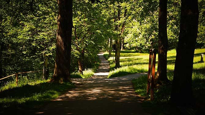 Der Baumgarten ist ein schöner Park in Füssen