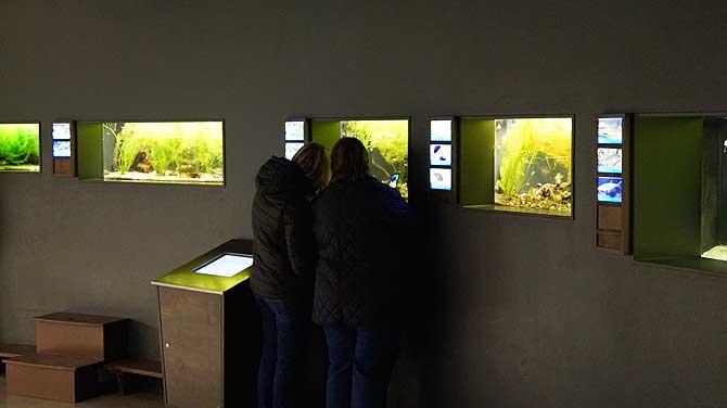 Besucher im Dunklen