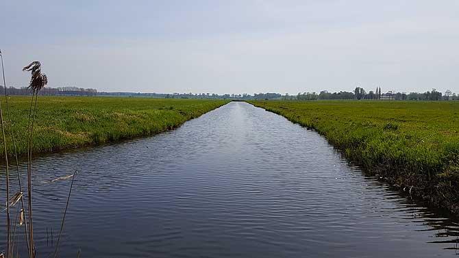 Wasserlauf im Thurbruch
