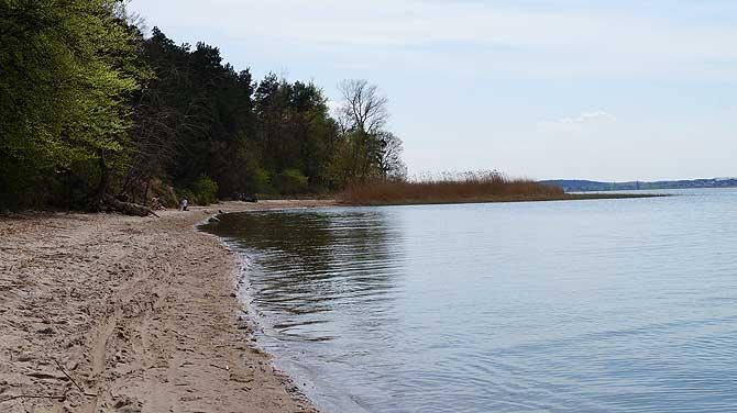 Strand am Achterwasser