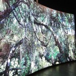 Video-Installation