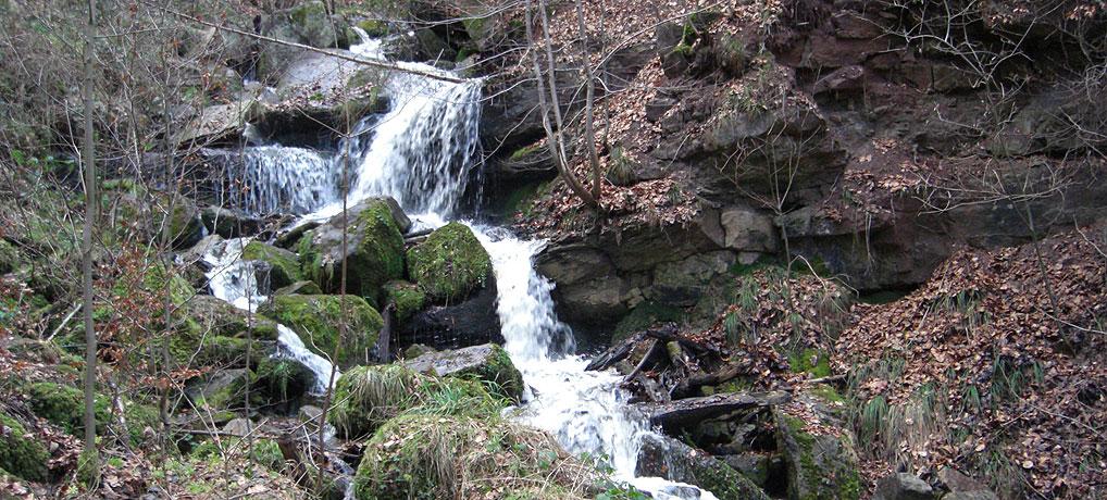 Die Heslacher Wasserfälle in Stuttgart sind so wohl die einzigen in Deutschland.