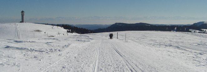 Rodeln am Feldberg